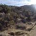 Long Canyon (01106)