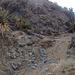 Long Canyon (01122)