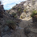 Long Canyon (01129)