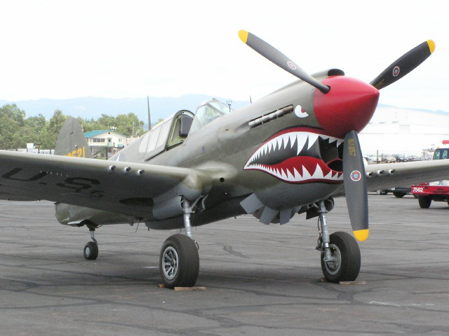 P-40E (p8222622)