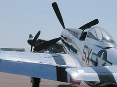 P-51D (p4250498)