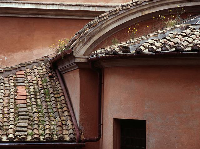 Chiesa dei Stanti Luca e Martina - Roma
