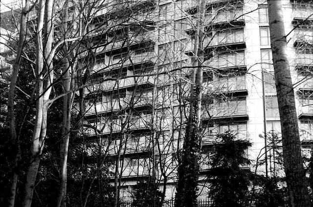 Flats from Battersea Park.