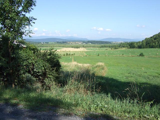 Vermont Hayfields