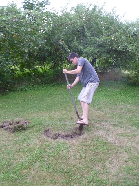 Henry's Tree - Groundbreaking.