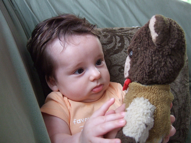 Checking Out Dad's Old Teddy Bear