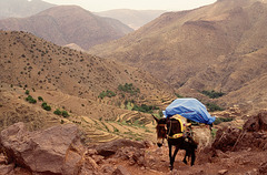1993-Maroc-039(1)R