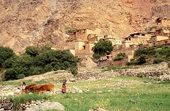 1993-Maroc-058(1)R