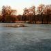 Still Frozen Pond