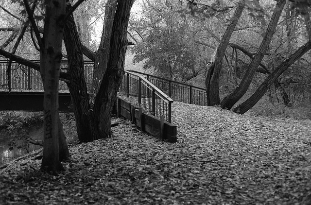 Footbridge, R. Wandle.