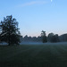 Misty Morning Moon