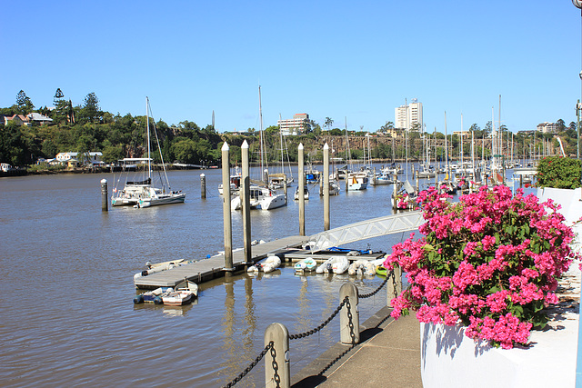 Gardens Point Boat Harbour