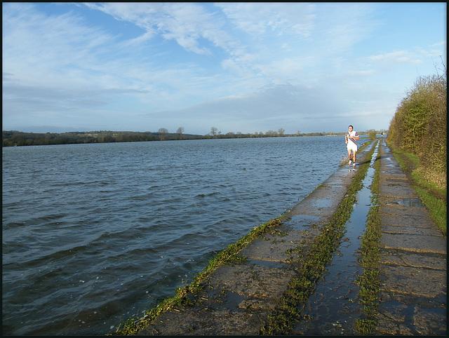 Port Meadow in flood