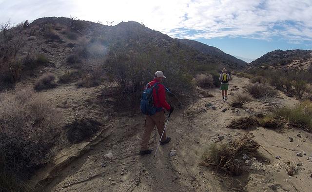 Long Canyon (01473)