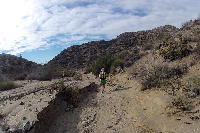 Long Canyon (01505)