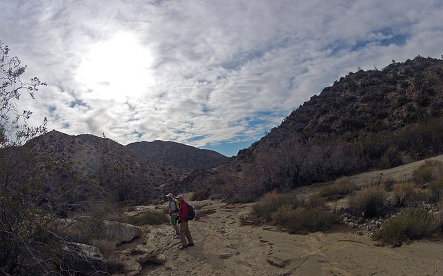 Long Canyon (01543)