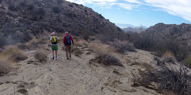 Long Canyon (01575)