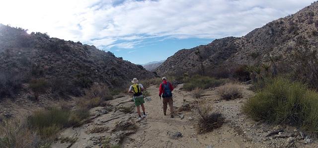 Long Canyon (01584)