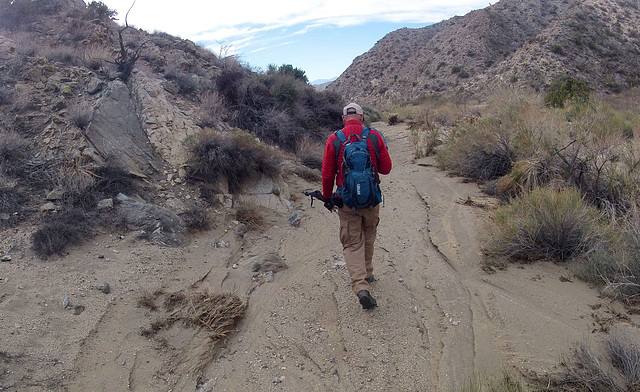 Long Canyon (01613)
