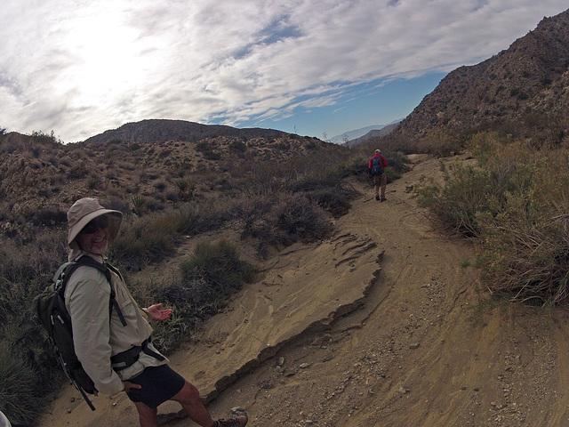 Long Canyon (01625)