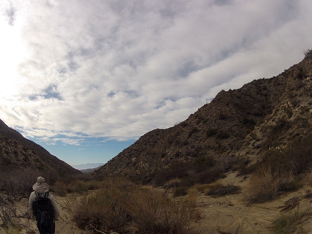 Long Canyon (01640)
