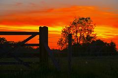 Haughton sunset