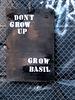 Grow Basil