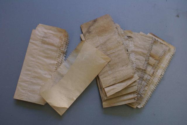 BM CV - chip bags