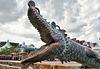 Crocodile cannon