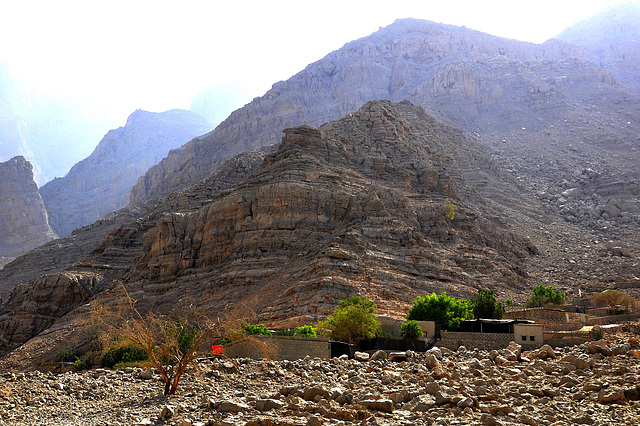 Letzter Hof im Wadi Litibah