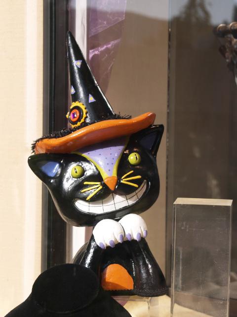 Skarrry Kitten (pa292309)
