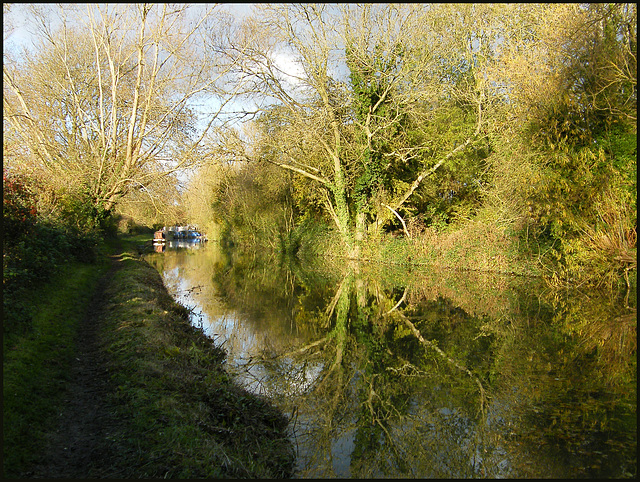 towpath reflection
