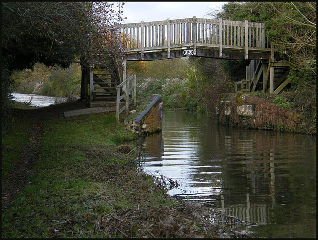 Bridge 229