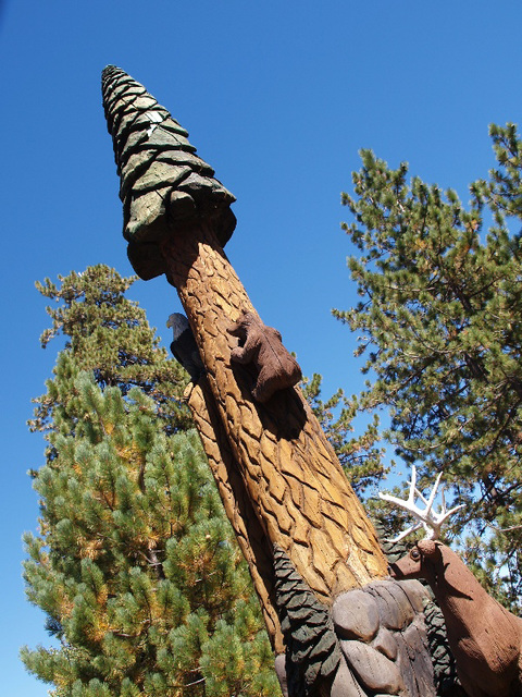 Big Tree (p9012570)