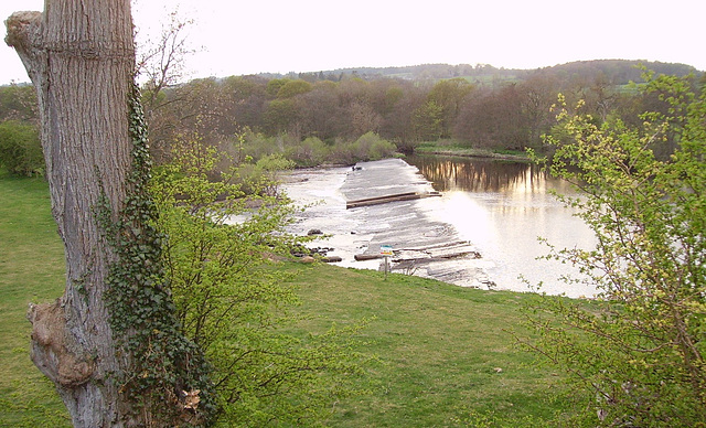 gbw - chollerford weir low water