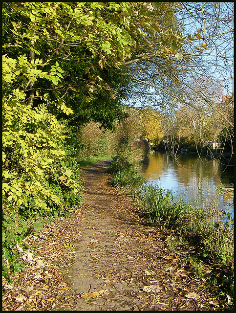 towpath north of Jericho