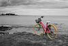 vélo à Sainte-Marine