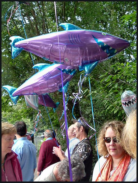 property shark demonstration