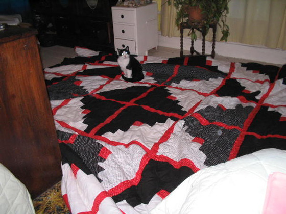 "One of my quilts, which I call ""the monster""."