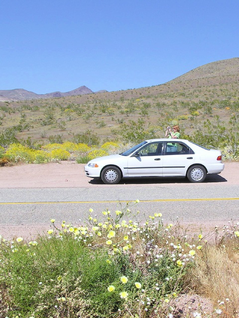 Death Valley (p3314623)