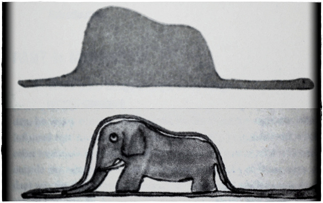 The Elephant in the Boa Constrictor
