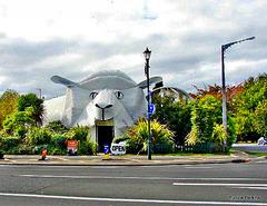 Big Sheep Wool Gallery,  Tirau