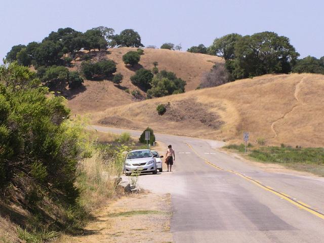 Road (p8081861)