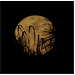 Perigee Moonrise Through the Palms
