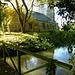 affpuddle church, dorset