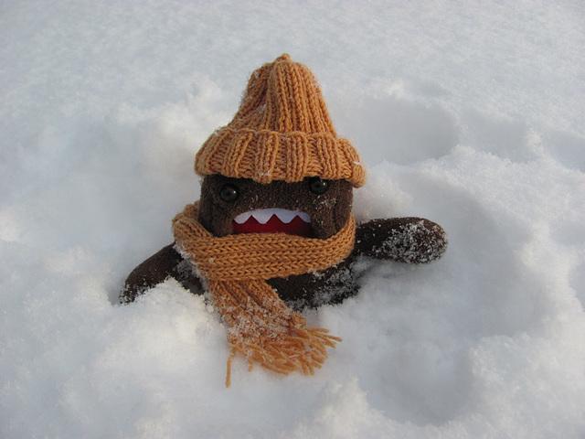 Domo tried to make a snow angel