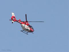 Hubschrauber über dem Zoo Karlsruhe