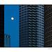 Gibbous Moon Skyline