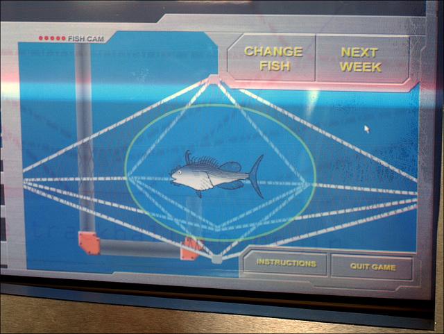 Tyler's fish