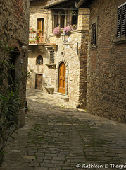Greve in Chianti Montefioralle Tuscany 052814-004